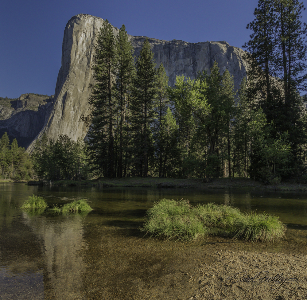 Sunrise at El Capitan from Cathedral Beach.  Reflection is in the Merced River, running very cold at this time of year.