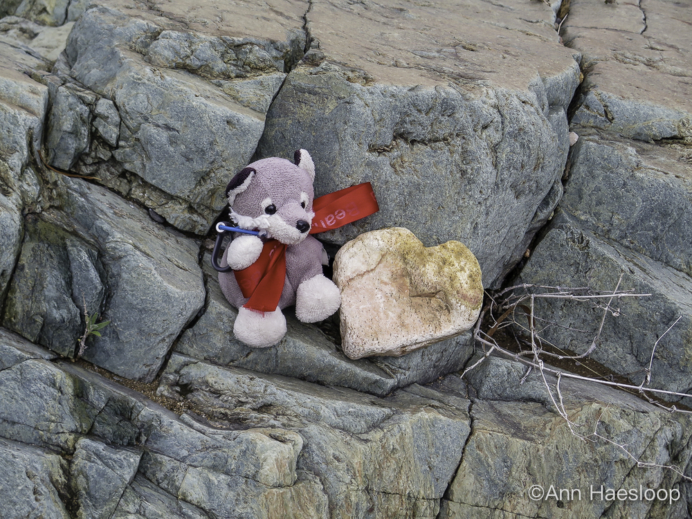 So good to see our mascot, Lefty. With an early Valentine rock . . .