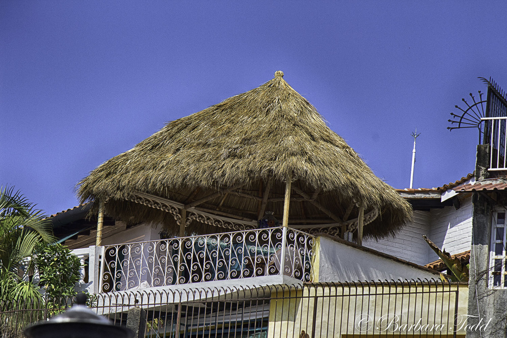 When I see thatched roofs and palm leaves together I think 'tropical'. Reminds me of growing up in the tropics. Breezy afternoons, perfect temperatures!