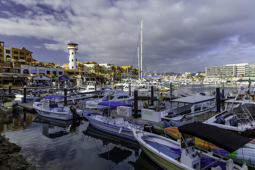 Harbor at Cabo San Lucas.