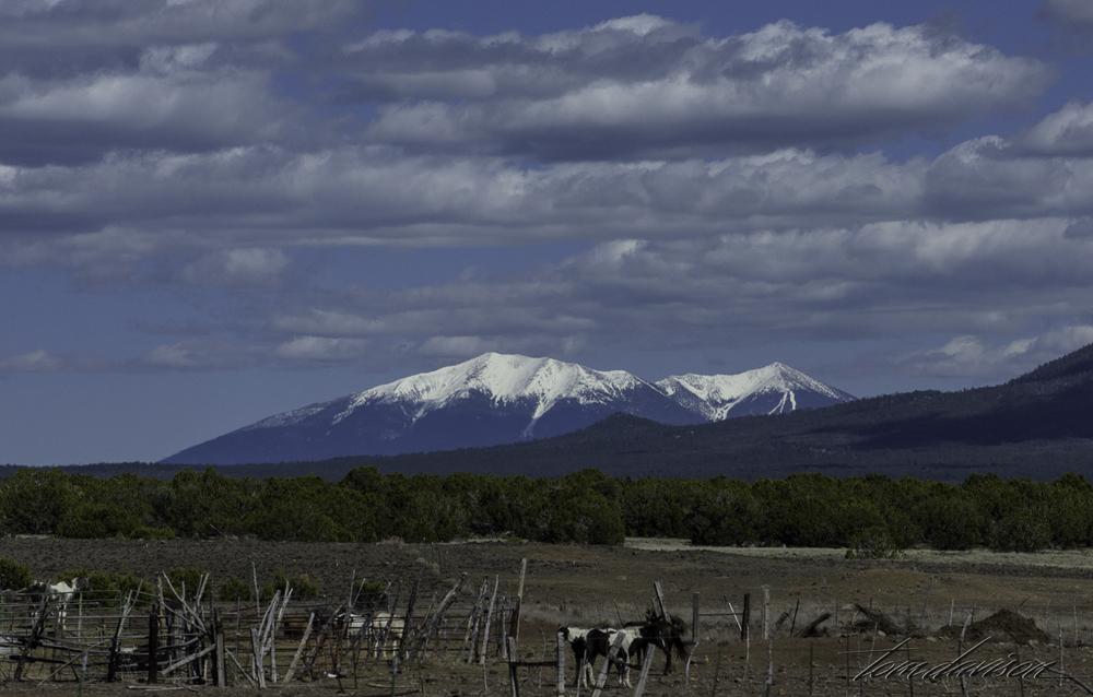 Still snow on the peaks around Flagstaff.