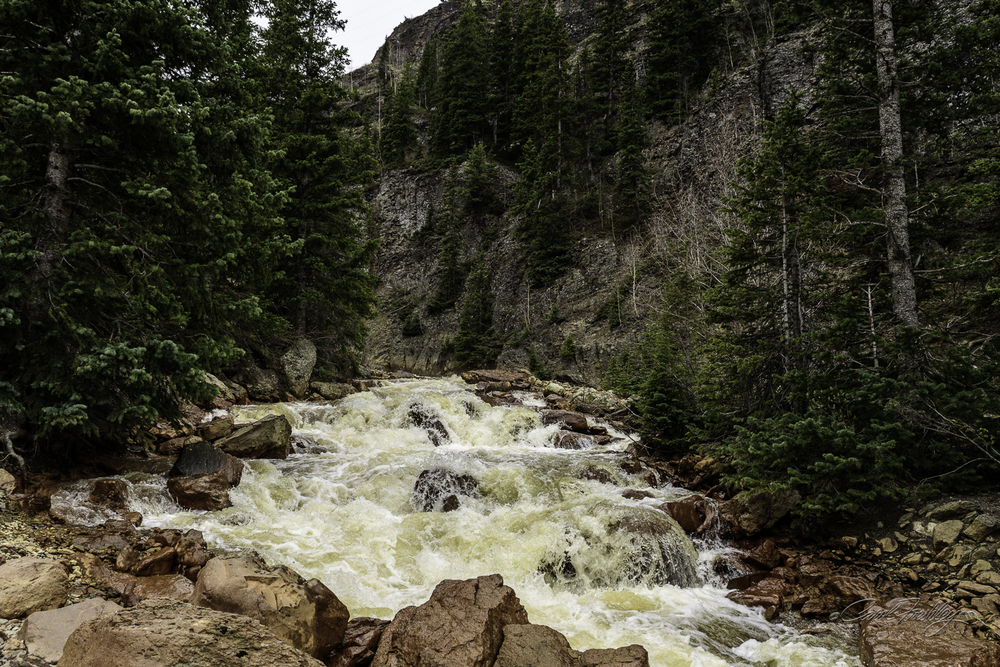 Streams and rivers are running with a lot of force this spring in Colorado.  I wish I could include the roar for you.  By the time we got to this stream the weather was looking ominously like snow was on the way.