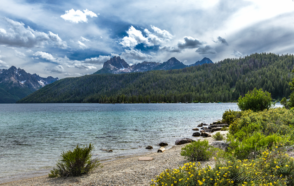This is Redfish Lake. It is a popular destination and filled with campers, boaters and fishermen. We had hoped to get better opportunities to get the Sawtooth Mountains as a background to the lake. Maybe even a reflection . . .