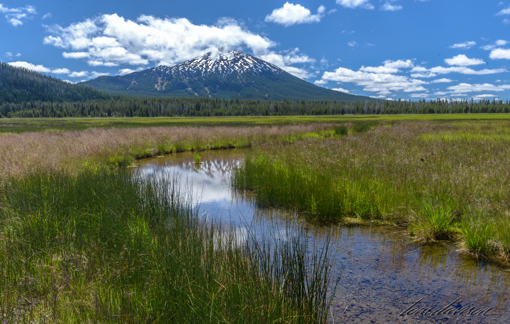 If you are willing to walk across a boggy bottom you can find small creeks running either into or out of Sparks Lake.  Good time to get your shoes wet!