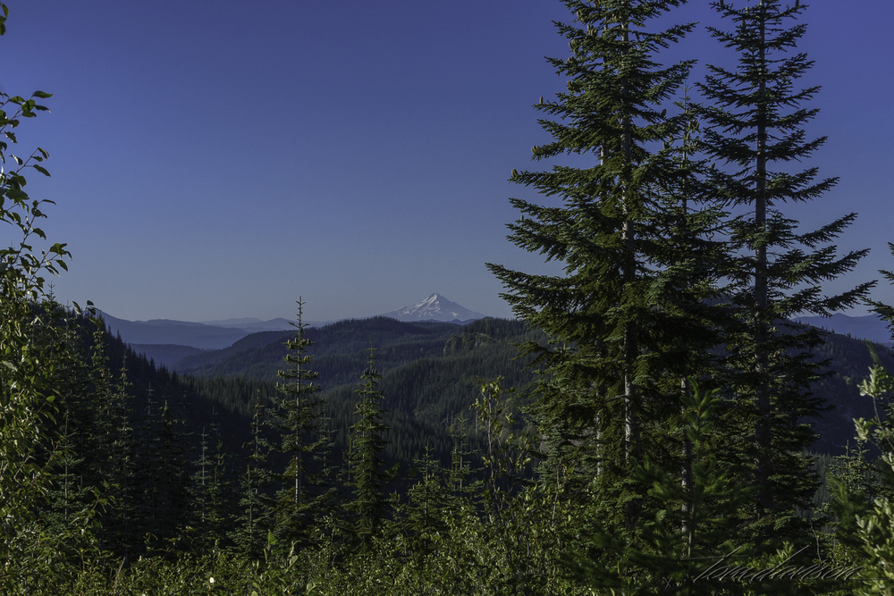 Mt. Hood in the distance. We could see forever!