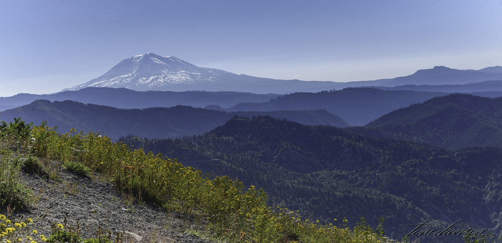 Mt. Adams from a viewpoint where you can actually see both mountains.