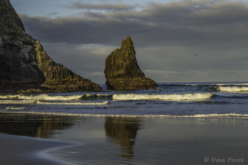 DP Canon Beach-5.jpg