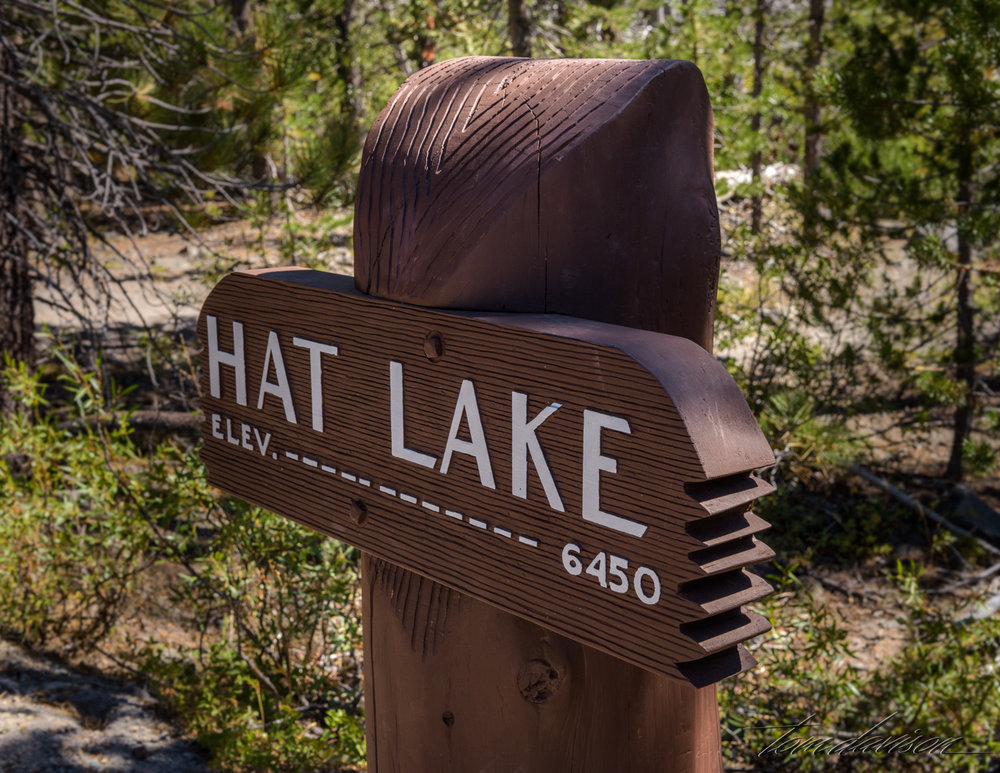 Tom loved the detail on this sign.  Hat Lake is listed as 'intermittent'.  I suspect that means that sometimes it is a lake and sometimes a 'bog'.  On this day it was a bog with an interesting creek.