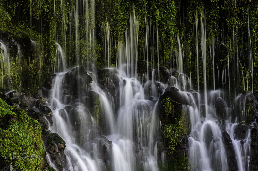 I, personally, loved the strings of water seeping through the basalt rock that can be captured before they hit the rocks.