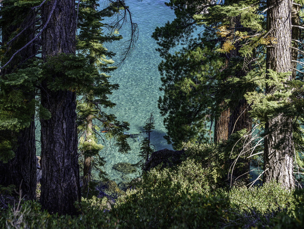 It is called Emerald Bay for a reason.