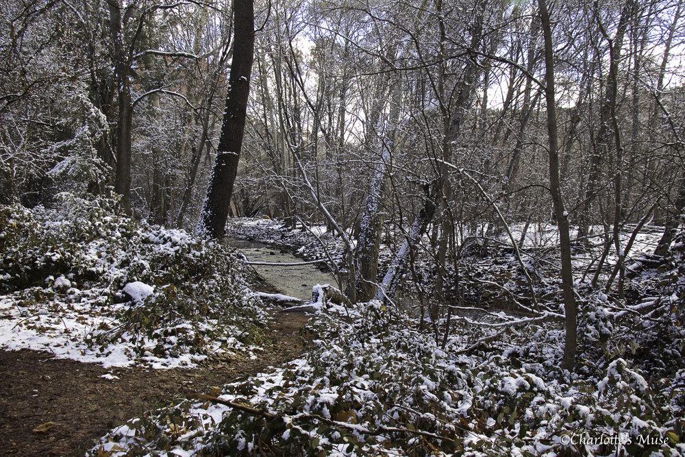 KP Sedona Snow-110.jpg
