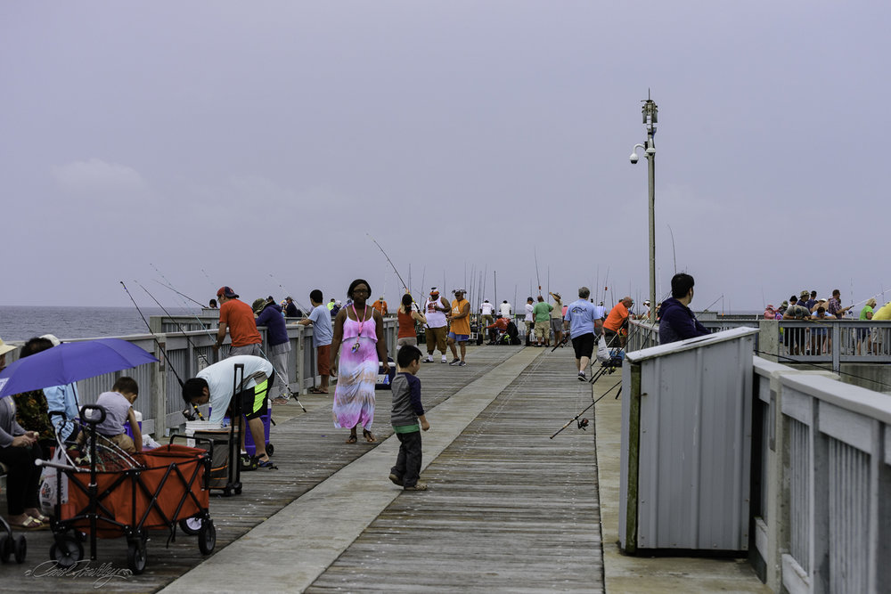Soon the pier was turned into a fishing festival. Some folks were managing up to four and five fishing poles. Small pup tents were set up for shade and for the kids. Everyone seemed to be having a great time.