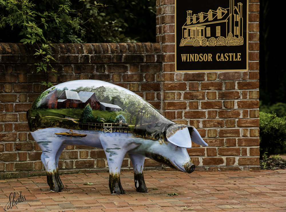 Smithfield Ham is processed in Smithfield.  No surprise that these 'porkers' are found around town with art depicting various aspects of Smithfield lifestyle.