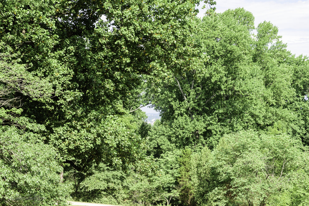 From a chair on the porch, Thomas Jefferson could look off into the distance where construction was taking place on the University of Virginia. The hole in the trees is maintained so each visitor can appreciate what Thomas Jefferson would have seen.