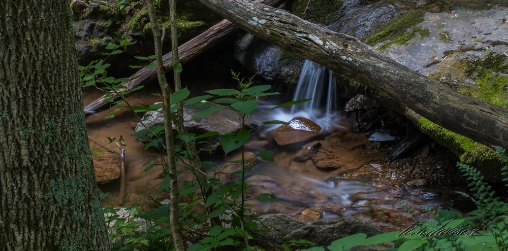 Smaller waterfalls are found along the path to the larger Black Hollow Waterfall.
