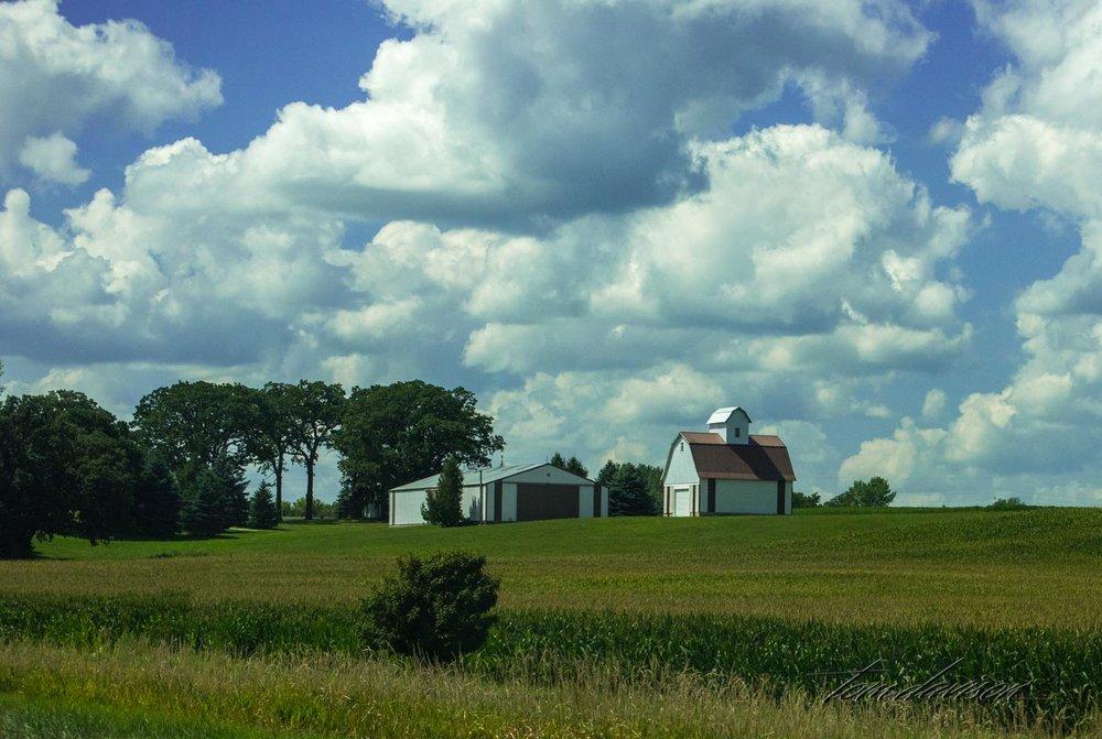 Iowa (8 of 65).jpg