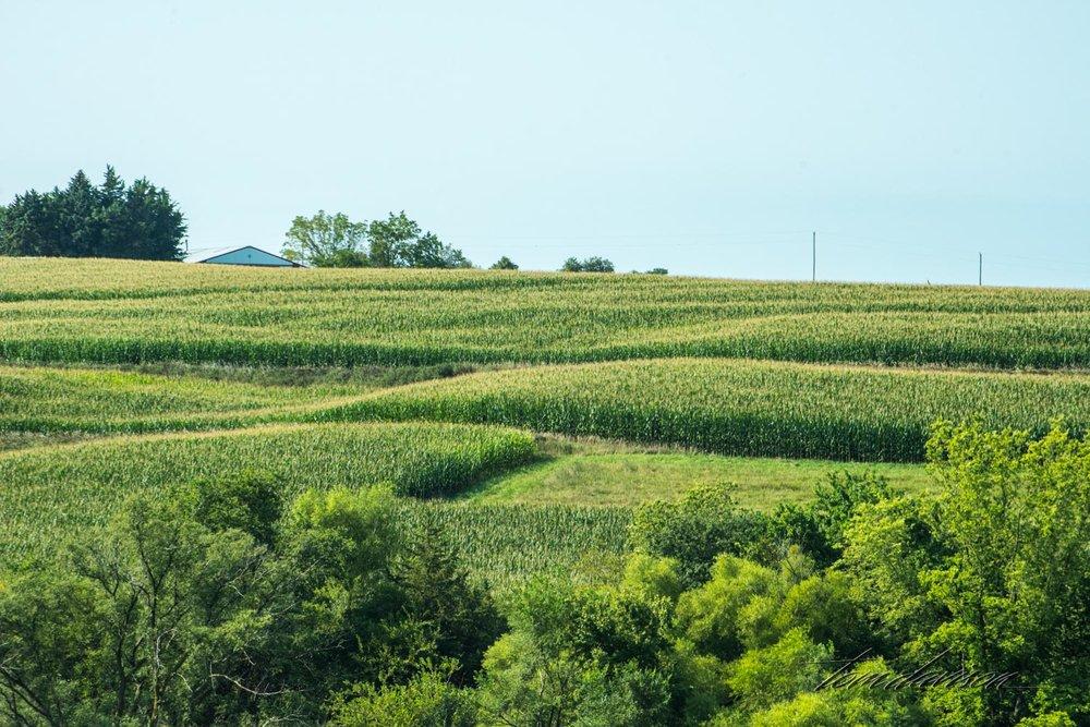 Iowa (34 of 65).jpg