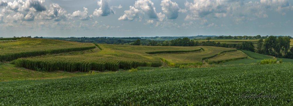Iowa (40 of 65).jpg