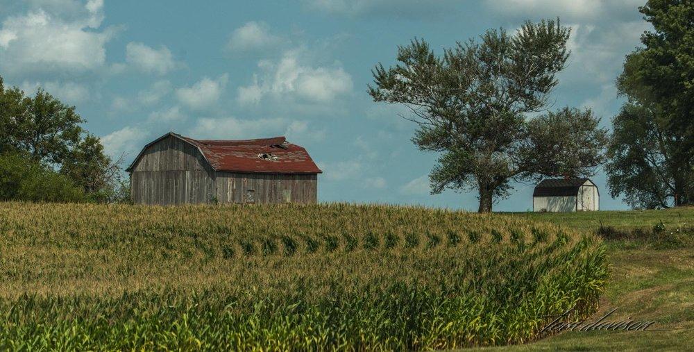 Iowa (41 of 65).jpg