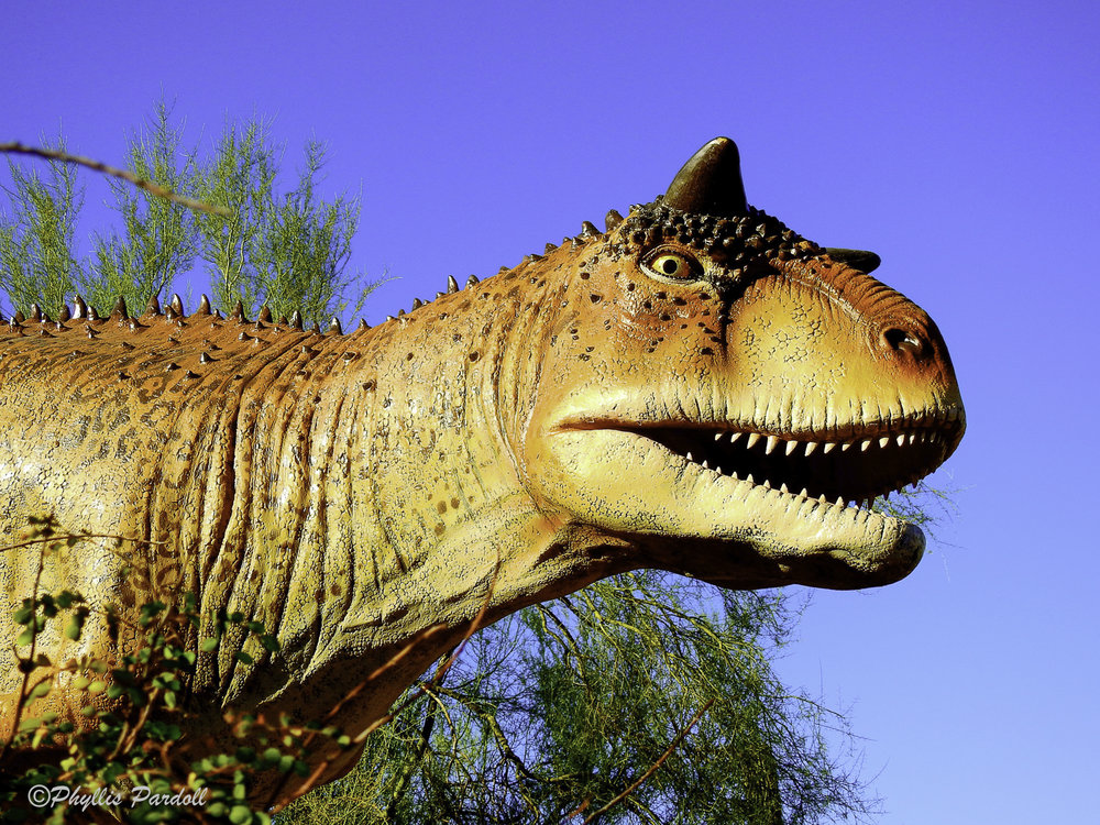 Dinosaurs in the Desert-4.jpg
