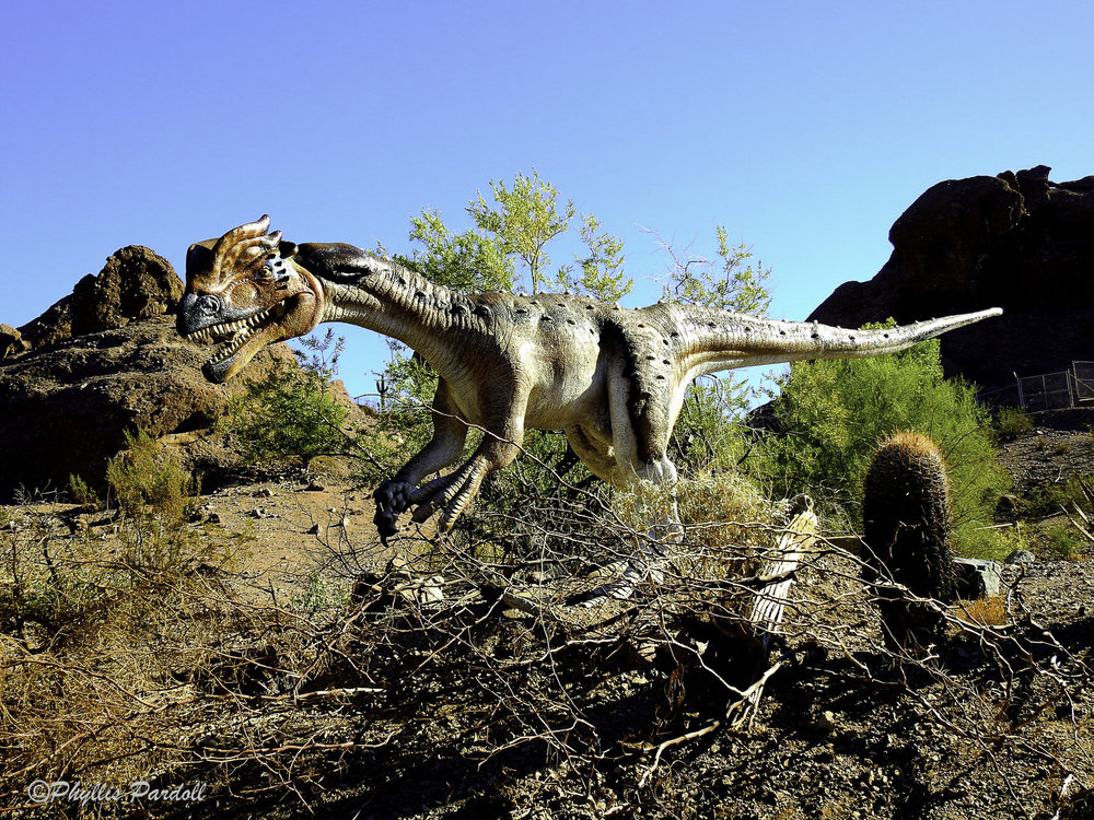 Dinosaurs in the Desert-21.jpg