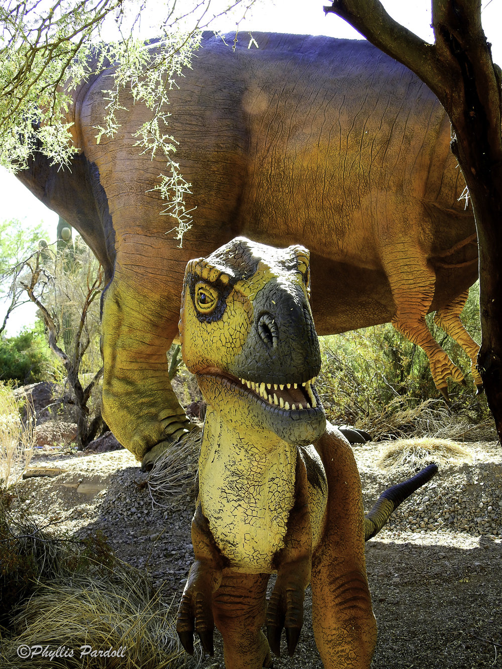 Dinosaurs in the Desert-24.jpg