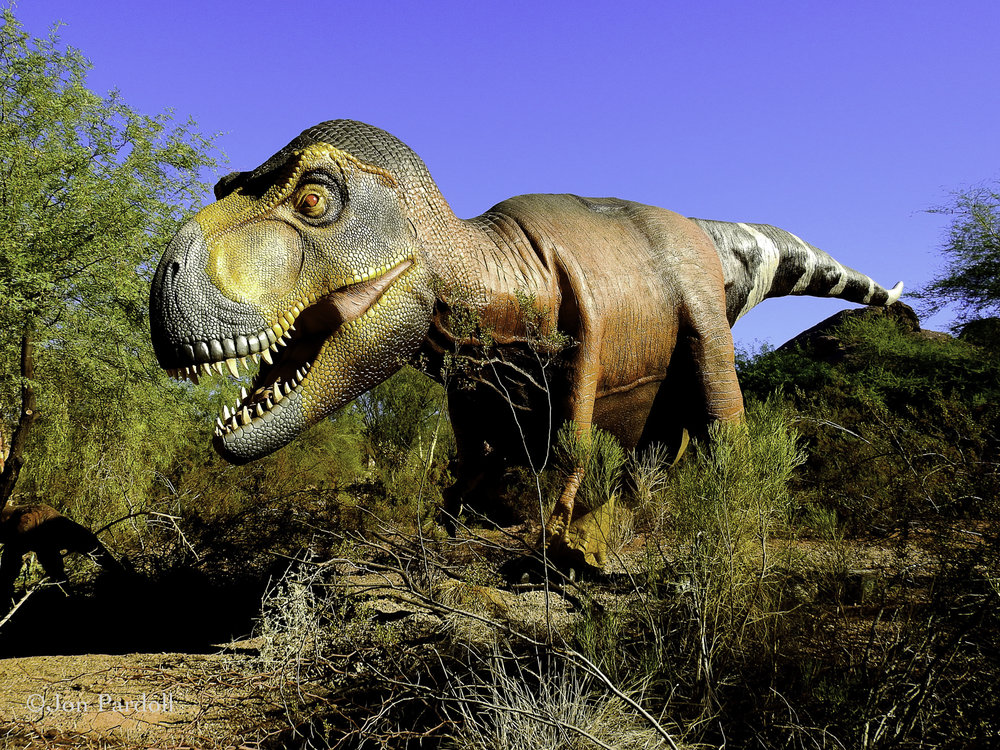 Dinosaurs in the Desert-26.jpg