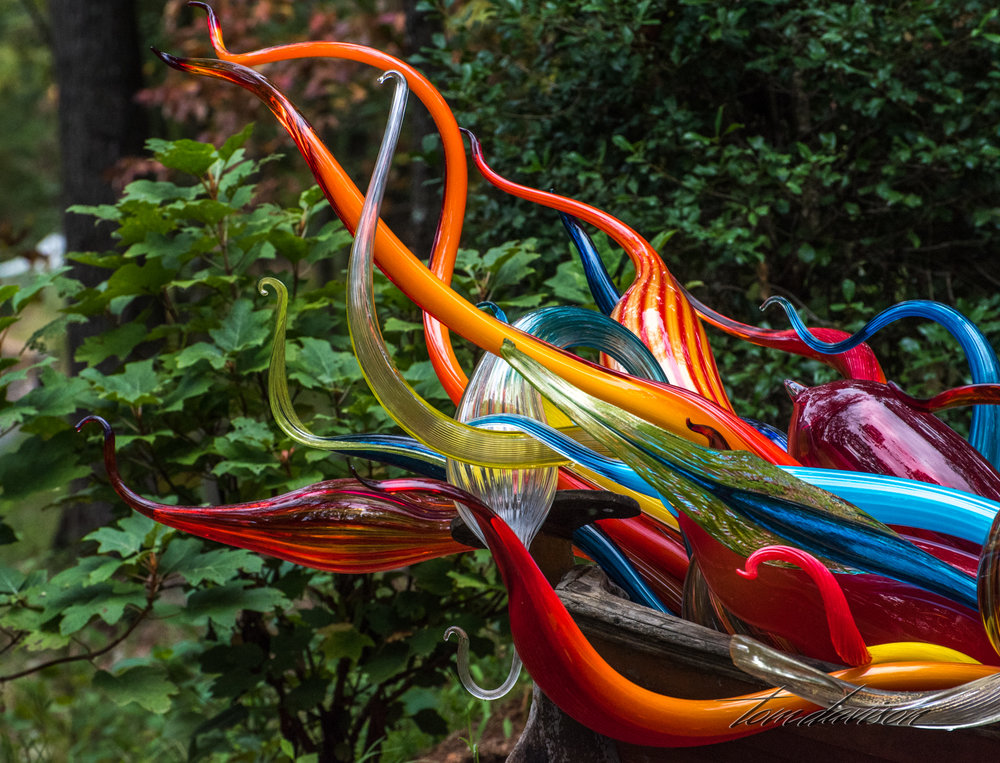 Chihuly TD (309 of 10).jpg