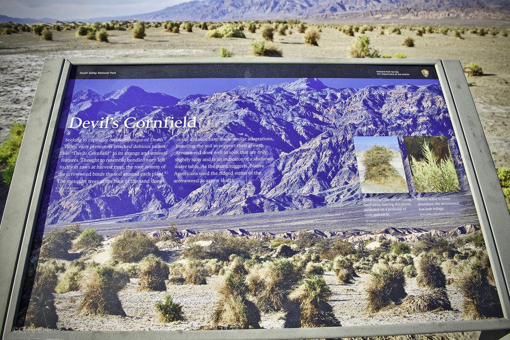 CC Death Valley National Park-7.jpg