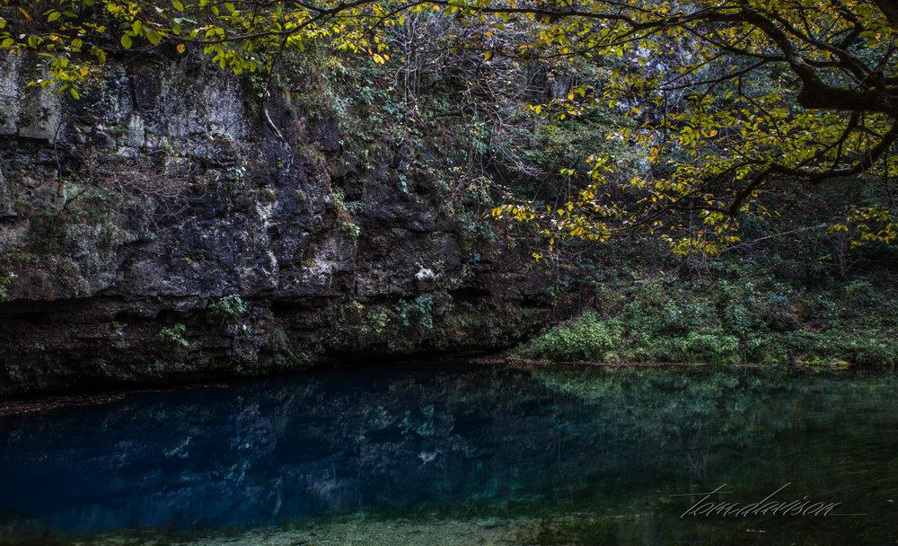 TD Blue Spring (309 of 14).jpg