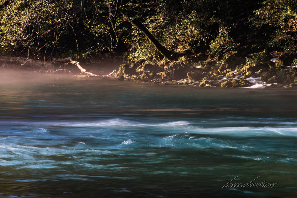 We arrived early enough to get some fog on the river. There were many photographic opportunities downstream as at the springs surge into the river bed.
