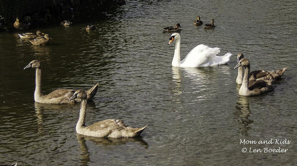 Mom & Kids 1106.jpg