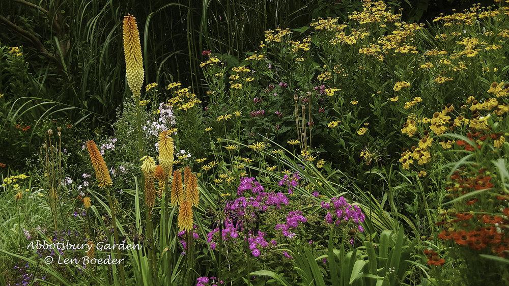 Abbotsbury Garden 1007.jpg