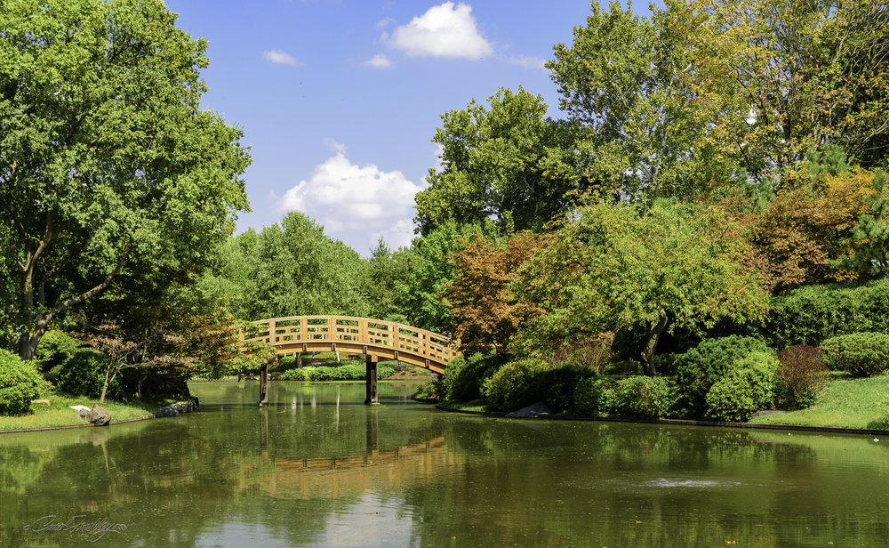 MO Botanical Gardens-63.jpg