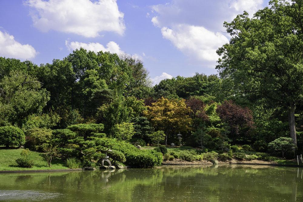 MO Botanical Gardens-58.jpg