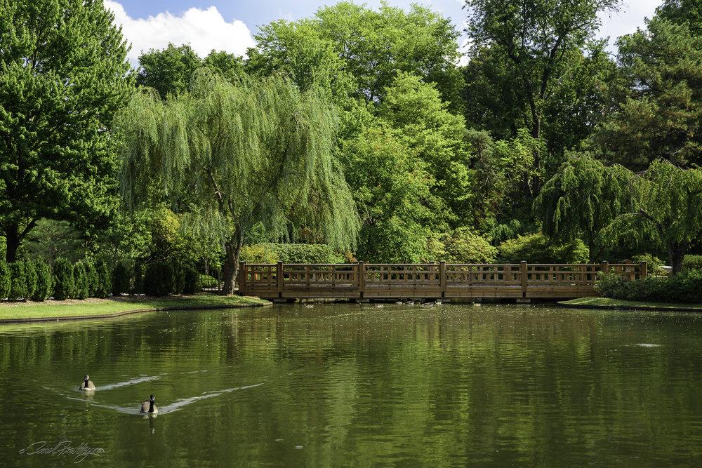 MO Botanical Gardens-73.jpg