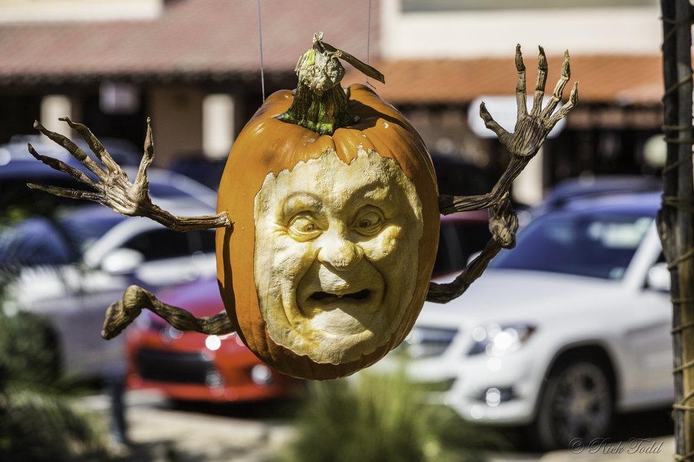 Todd Pumpkins-10.jpg