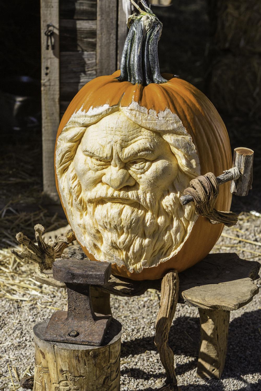 Todd Pumpkins-5.jpg