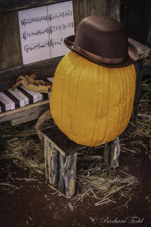 Todd Pumpkins-22.jpg