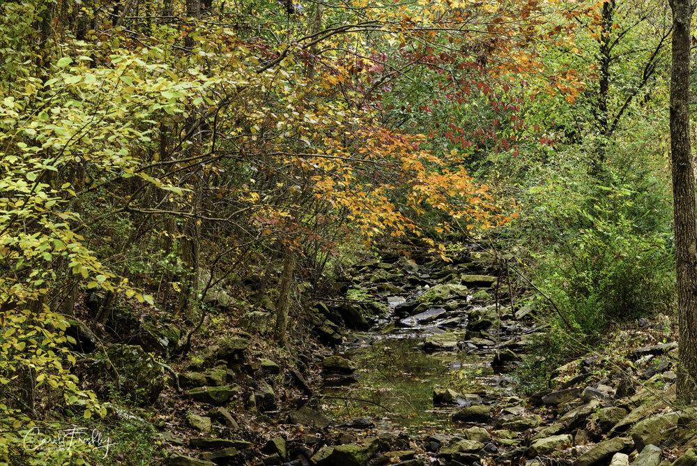 Upstream.