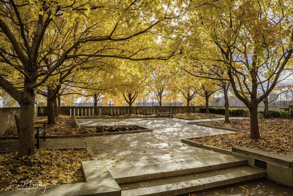 Neslon-Atkins Sculpture Garden-14.jpg