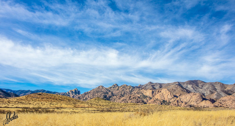This is the view as you head into the Dragoon Mountains. It is a wide open area covered in tall grasses, mesquite, a two lane road to the mountain base and a long line of barbed wire.