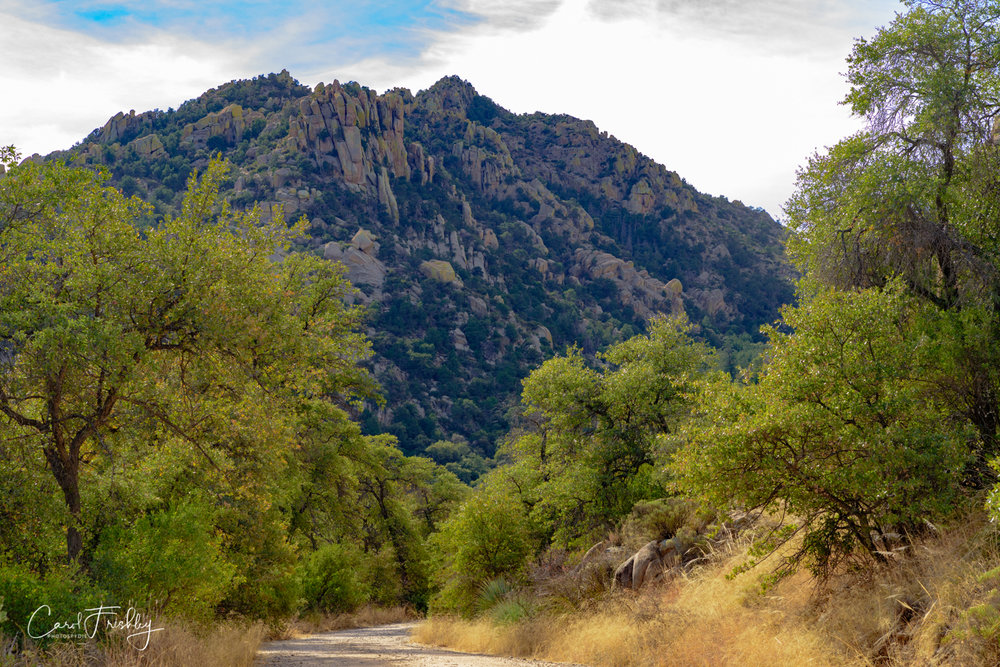 This dirt road is getting us real close to the campground. This is typical of the landscape in the area.