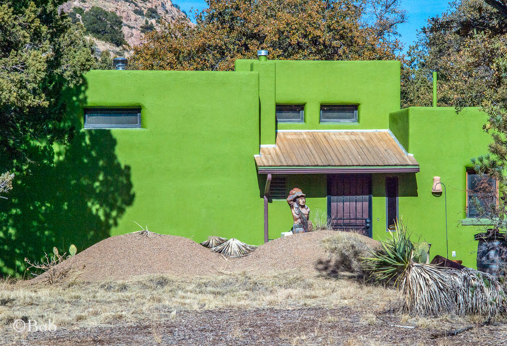 Bob liked the different look this house projected . . . GREEN!!