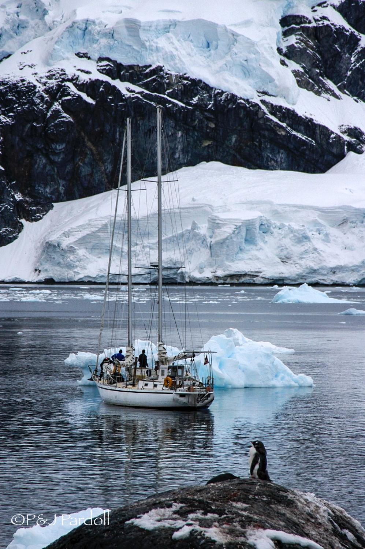 Antarctica -2005