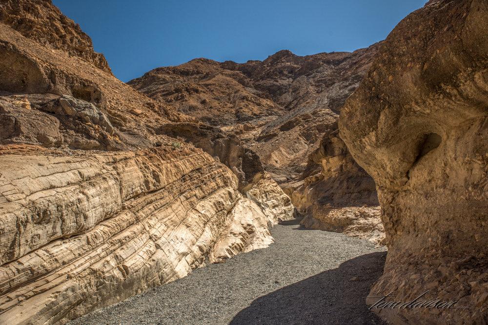 Mosaic Canyon TD-5.jpg
