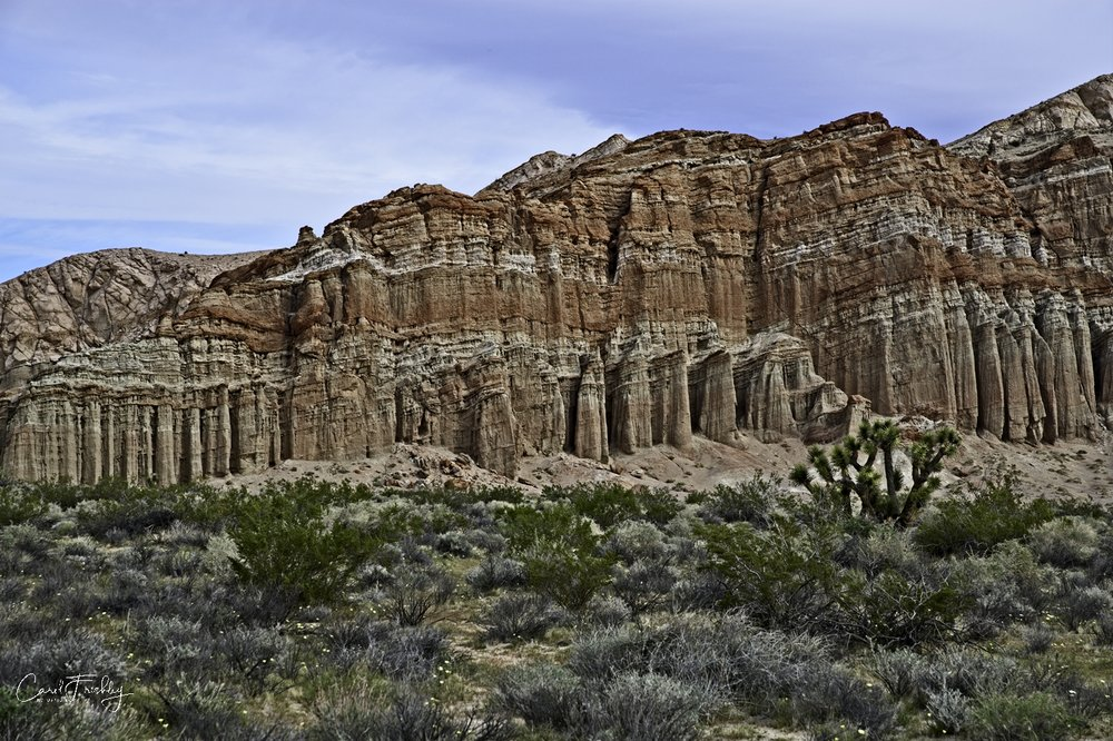 Red Rock Canyon50.jpg