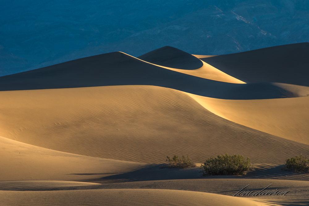 Dunes TD-5.jpg