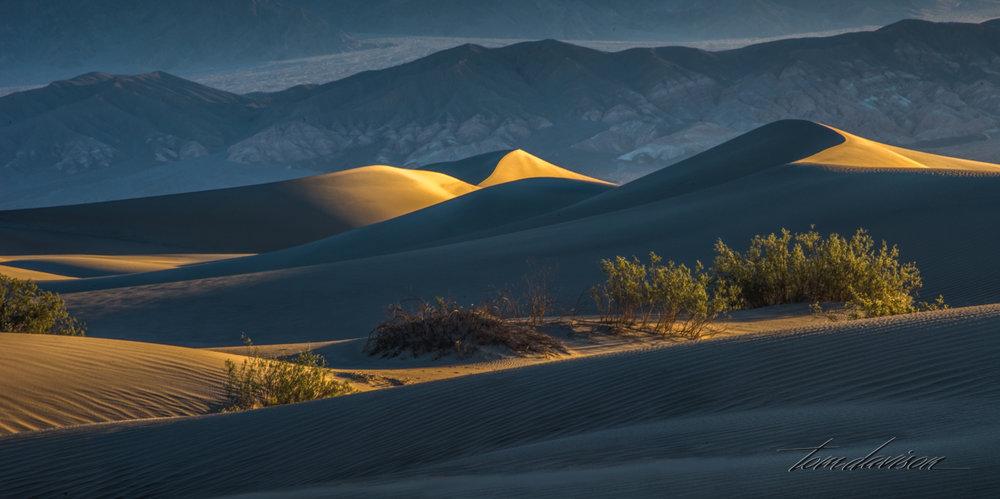 Dunes TD-7.jpg