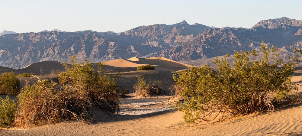 Mesquite Flat Sand Dunes-1.jpg